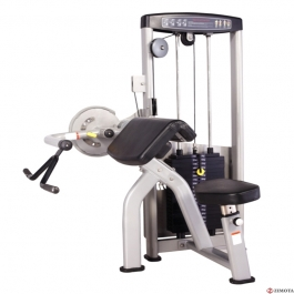 Biceps & Triceps S6 ZMT PRO