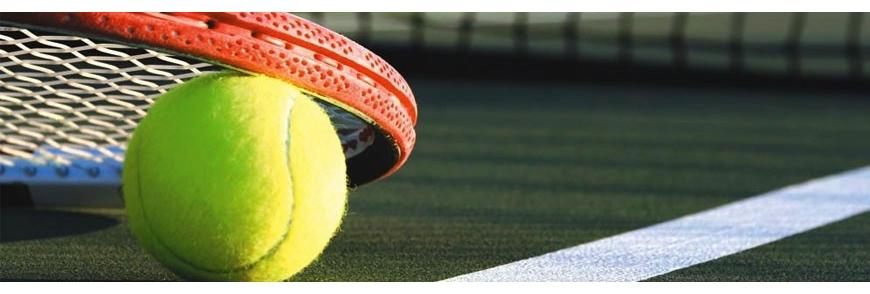 Tennis, Tennis de table