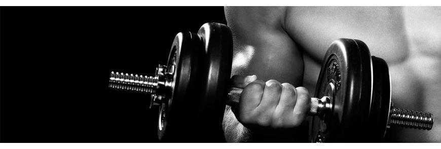 Haltères musculation