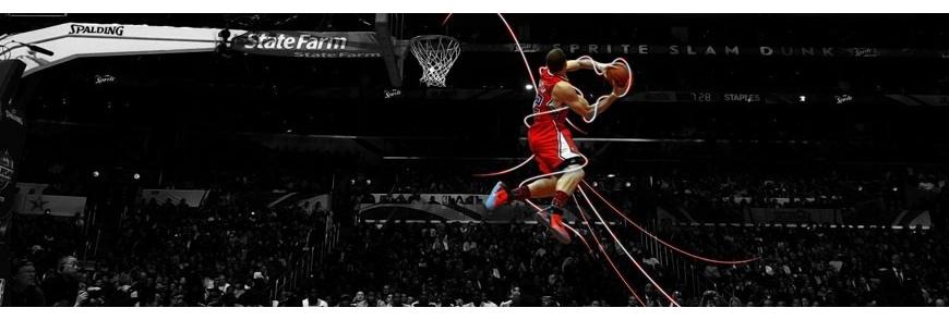 Panneaux et jeux de basket